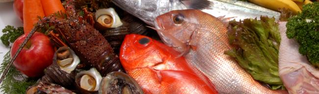 新湊の魚中間画像